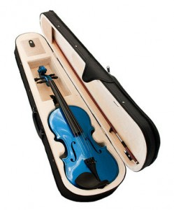 Discount Musical Instruments on Zulily