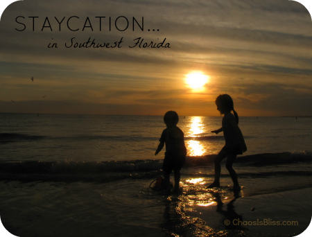 Family travel tips for southwest Florida