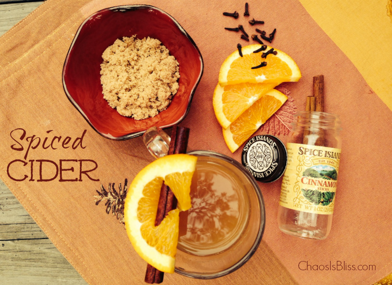An easy slow cooker Spiced Cider recipe to add to your Fall drink recipes!