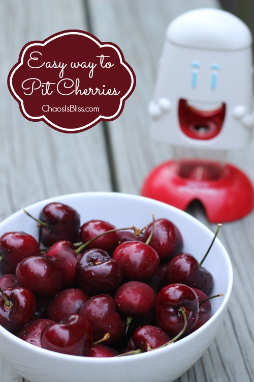 Fresh cherries are full of great health benefits! Here is an easy way to pit cherries with a cool kitchen gadget.