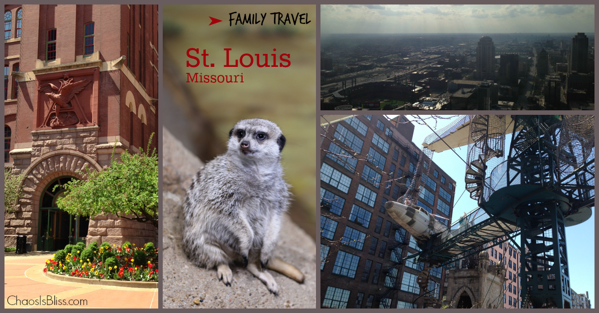 Planning a family vacation to St. Louis? Find out what to do in St. Louis with kids!