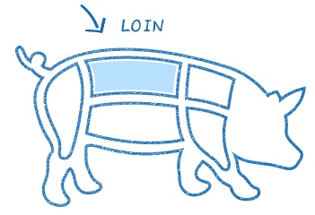 Where is a loin cut on a pig?